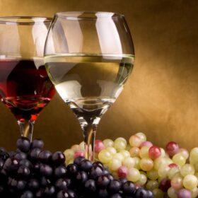 Odporne vinske sorte